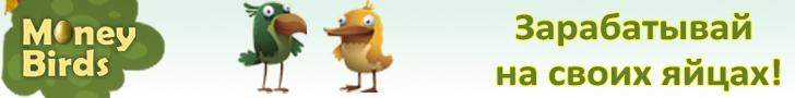 http money birds es account